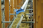 Pellon conveyor belt feed - The affordable alternative to feet robots!